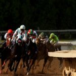 Horse dies during race at Santa Anita; jockey hospitalized